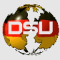 Webseitenoptimierung, Suchmachinenoptimierung DsU