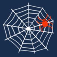 Webspinnen - Webdesign Magdeburg und Umgebung