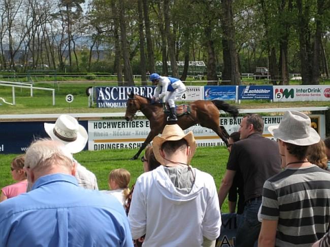 Ascheberg Himmelsbach Cup