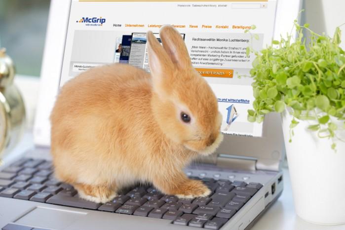Auf einem Notebook sitzender Hase. Fotolia - ©paylessimage